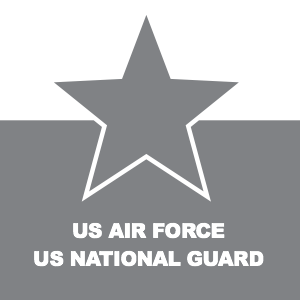 US AIR FORCE US NATIONAL GUARD
